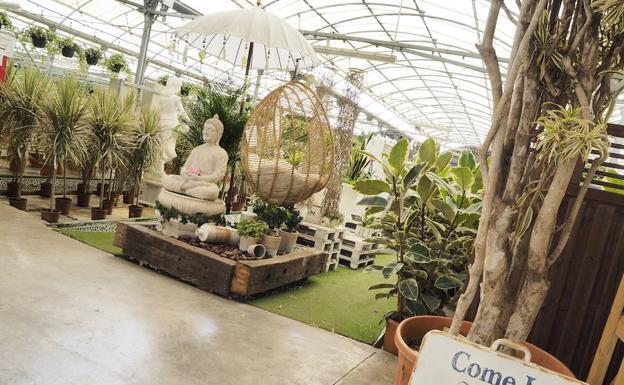 Las plantas y jardines tambi n son para el verano diario sur for Jardineria y plantas