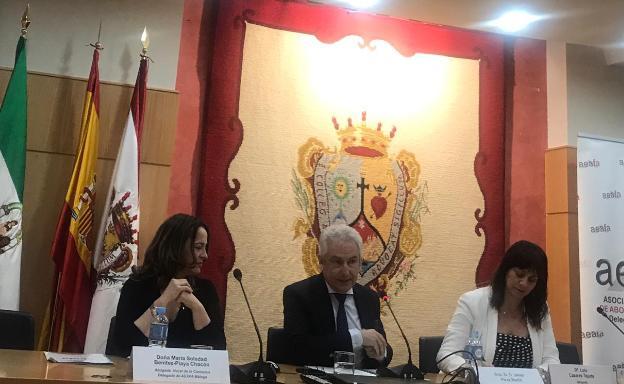 «El derecho de Familia asume a diario problemas sin solución en el Código Civil»