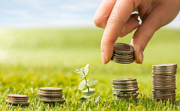 Productos financieros sostenibles, el éxito de un futuro verde y rentable